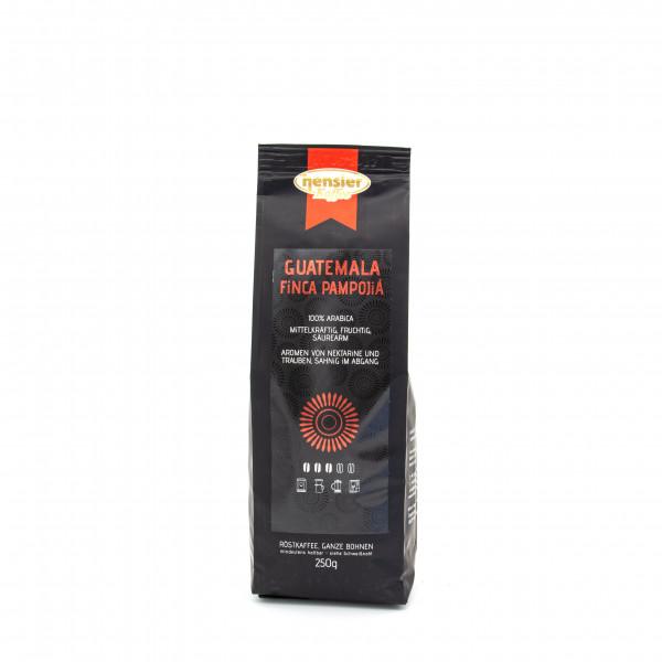 Guatemala Finca Pampojilá / 100% Arabica Kaffeebohnen